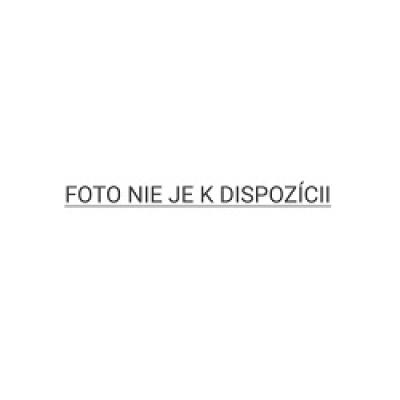 Garmin GPS navigace Camper 770T-D Lifetime Europe45